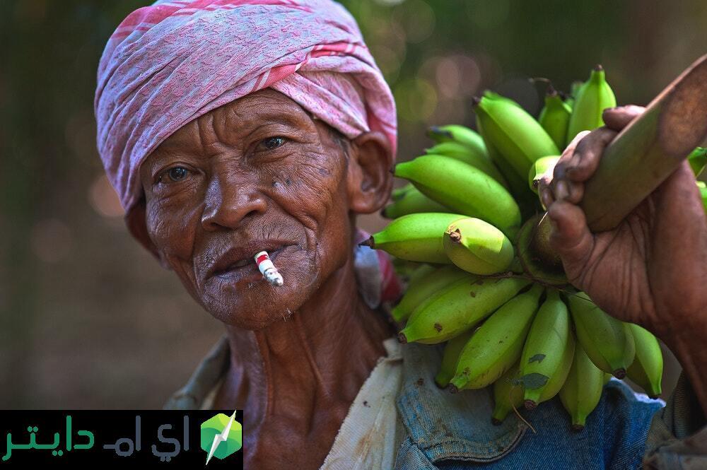 الموز، دقيق الموز ومسحوق الموز وفوائدهم